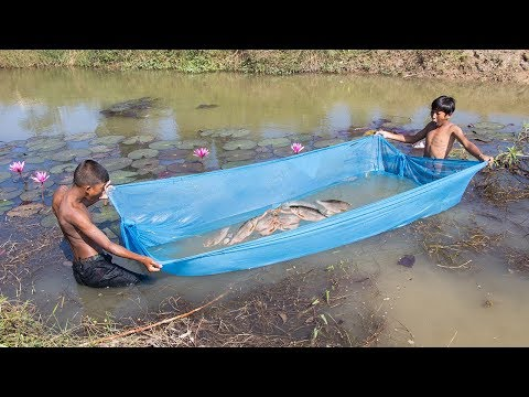 Unique Fish Trapping - Amazing Way of Catching Fish Using Mosquito Net   Cambo Trap