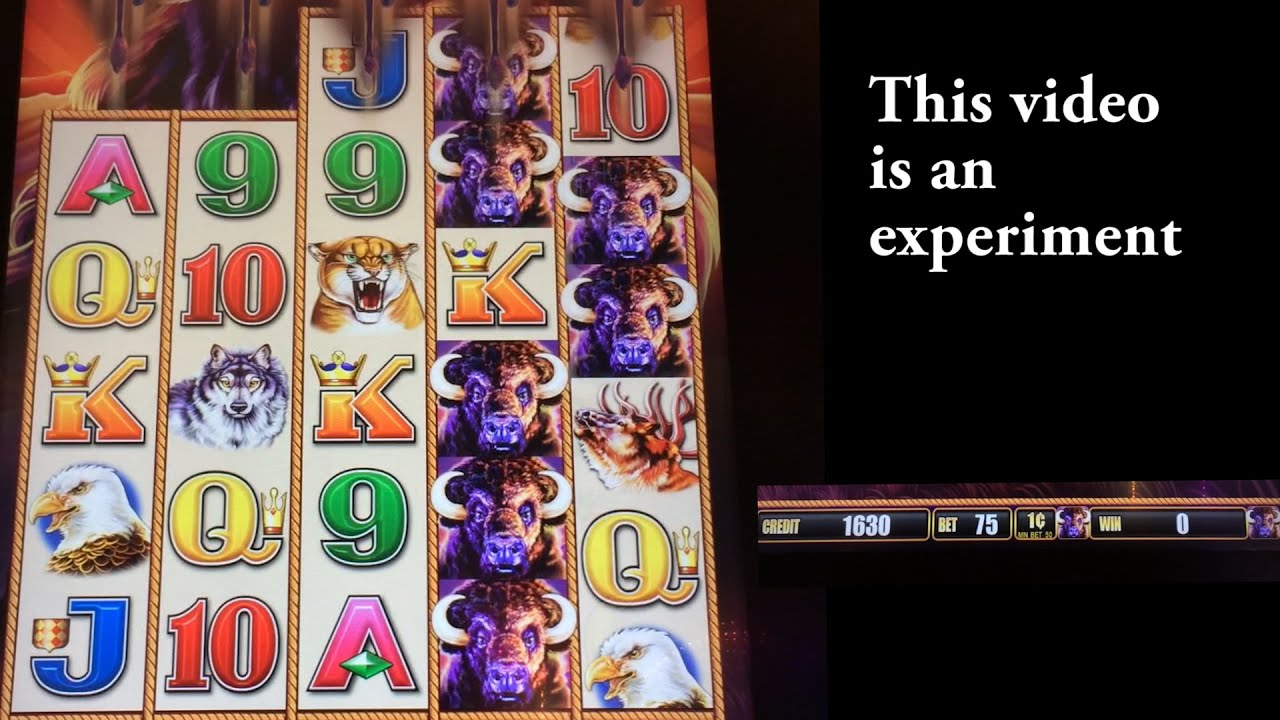 buffalo stampede slot machine