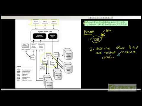 SCPT 20: Oracle Back Ground Processes (PMON,SMON,RECO)