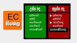 O/L Sinhala Language Revision සිංහල භාෂාව හා සාහිත්යය