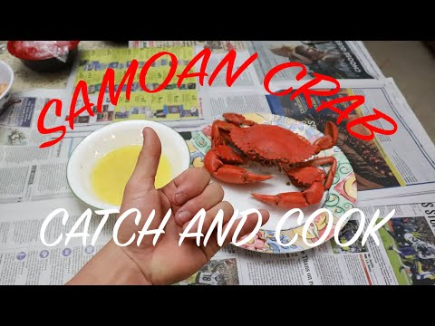 MUD CRAB With GARLIC LEMON BUTTER SAUCE - CATCH AND COOK