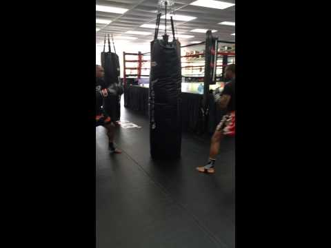 Chopping Down the Tree (Pole Bag)- Alvin Johnson