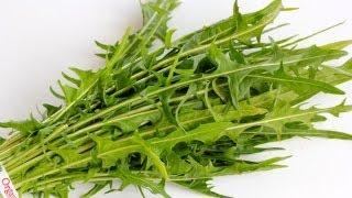 Dandelion Greens 101