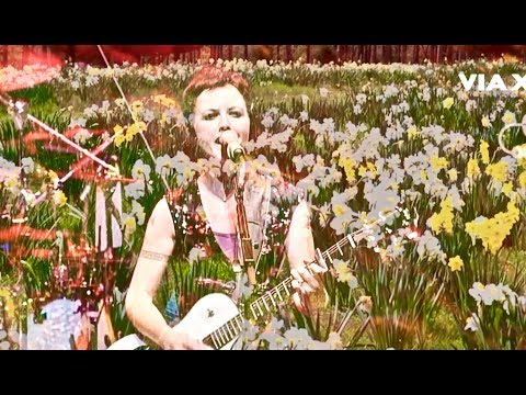 Daffodil Lament Music Video (The Cranberries, No Need To Argue Album)