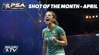 Squash: Shot of the Month - April 2018 - The Contenders
