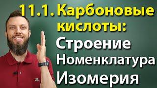 11.1. Карбоновые кислоты: Строение, номенклатура, изомерия. ЕГЭ по химии