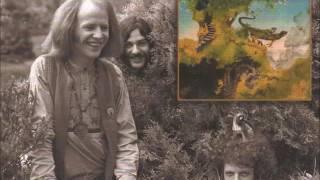 Dr Strangely Strange – Heavy Petting (Side 1) Very Rare `Acid Folk` LP £600 Vertigo Swirl