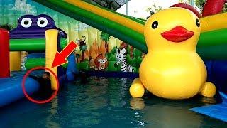 Asiknya Bermain Air, Mainan Anak Kecil - Water Slide WaterPark…