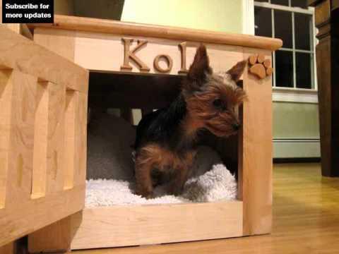 wood dog crate furniture ideas