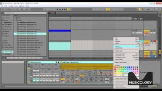 Ableton Live Minimal House Tutorial - How to Make Drums & Percussion - Free Lesson