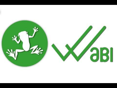 WaBi (WABI) - Fundamental Analysis