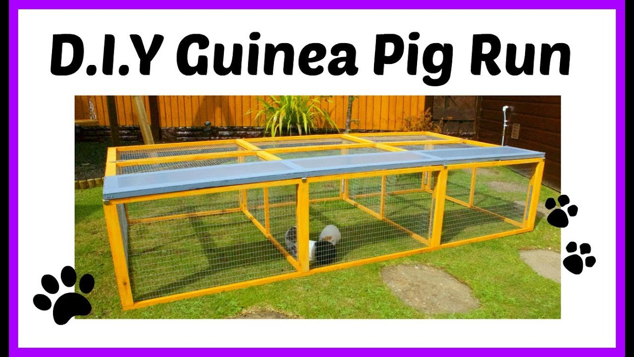 d i y guinea pig run youtube
