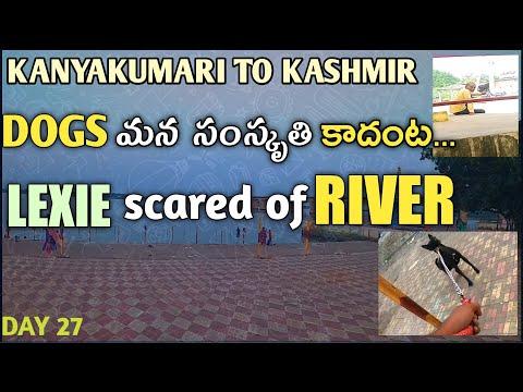 Stopped At Beechupalli Krishna River   K2K On Bicycle With Dog   thumbnail