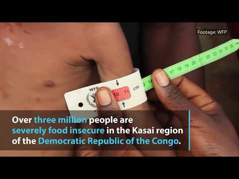 WFP chief warns of impending humanitarian disaster in DR Congo