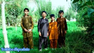 Afghan Pashto Attan song tribute to the Loya Paktia,