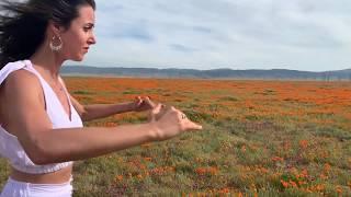Elohai Neshama in the Poppy Fields with Chloe Pourmorady