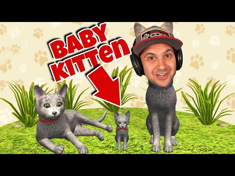 I Had a Baby Kitten... | Cat Simulator 2020