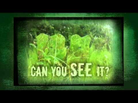 GhostBlind #6 - 30 Sec. Mirror Hunting Blind Commercial