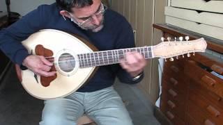 sonorité mandole kabyle à 11 cordes nylon
