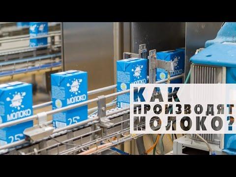 Как производится молоко?