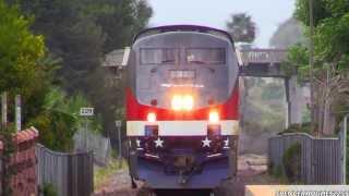 Amtrak 42 CHASE !!! (Santa Ana to San Diego)
