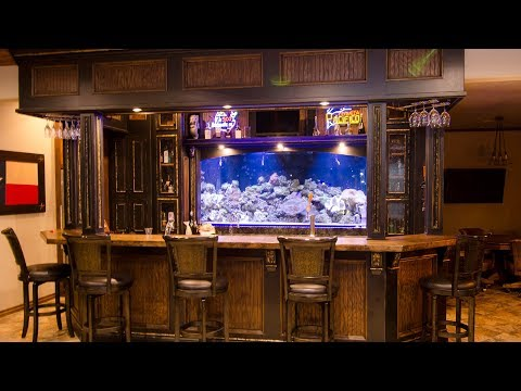 Darren's 1500-gallon Reef Behind His Bar