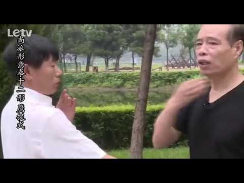 Shang pai Xing Yi quan 尚派形意拳