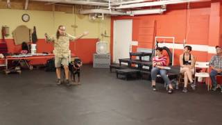 180 move for dog that is always pushing ahead for heeling
