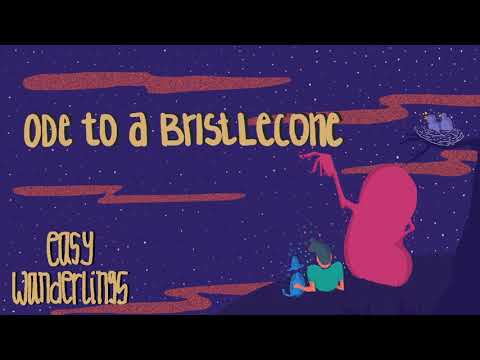 Easy Wanderlings - Ode To A Bristlecone (Radio Edit)
