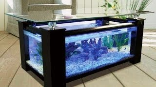 40 Amazing Aquarium Fish Ideas 2016 - Creative Home Design Fish Tank and Colors