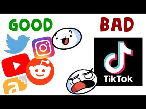 TikTok Is The Worst App Follow Me @theoddtiktoksout