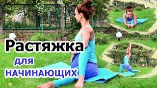 РАСТЯЖКА ДЛЯ НАЧИНАЮЩИХ на все группы мышц| Тянемся после тренировки
