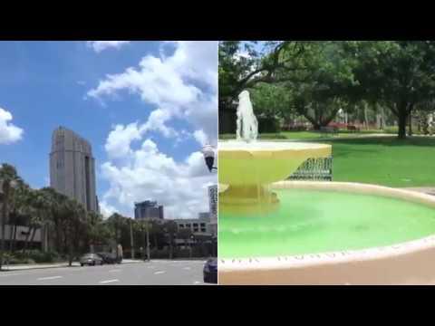 Top Orlando Real Estate Attorney Matthew Wasinger