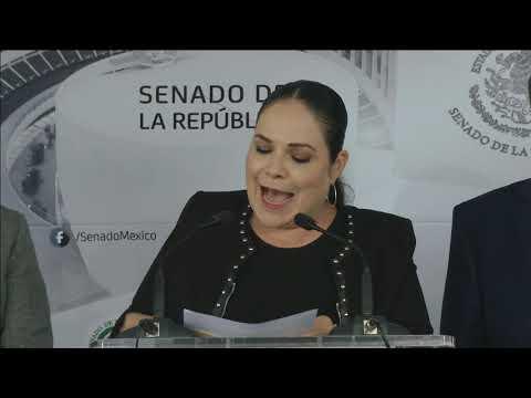 Conferencia de prensa de los senadores Mónica Fernández y Ricardo Monreal