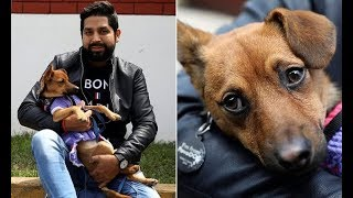 Peruvian Fan Goes Back To Russia To Adopt Dog