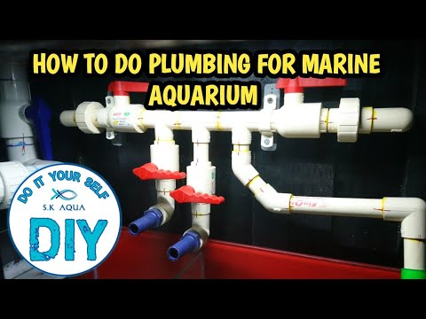How to do plumbing for marine aquarium? [TAMIL]