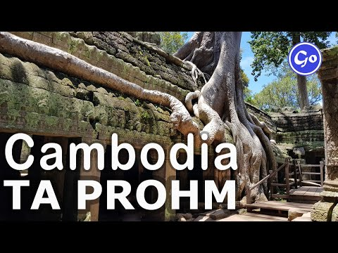 """Ta Prohm - The Jungle Temple,  Where Hollywood Made The Film """"Tomb Raider"""""""