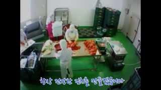 김치 /김치쇼핑몰 /포기김치/ 배추김치