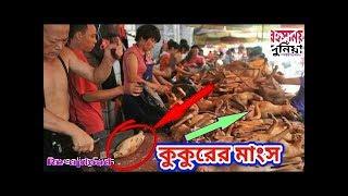 চীনের এই সত্যের ব্যাপারে আপনি জানেন না | Facts of China | Mysterious World Bangla | Re-upload