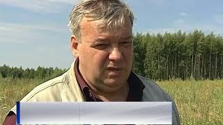 Жители Ярославского района обнаружили свалку с неизвестным веществом