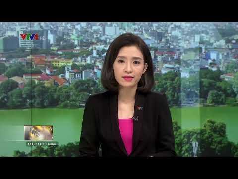 VTV News 8h - 01/11/2017
