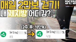 매일 2만보 걷기만해도 다이어트 효과가 있네?! 2주 공복 걷기 운동 장단점 후기! 내장지방 체지방 체중감량 도전! 지금당장 걸으세요![두꼽이챌린지] Walking exercise screenshot 5
