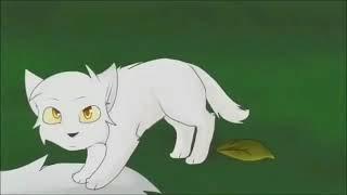 Коты воители Буран. Молния