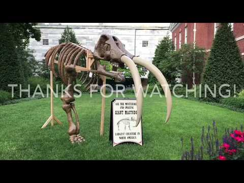 Philadelphia Travel Guide from Bell's to Banks  - Part 2 Pennsylvania
