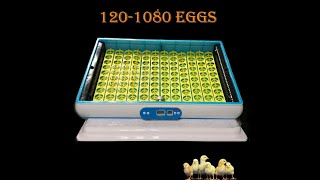 Gambar cover HHD Brand New  H series incubator introduction (H360 to H1320 eggs)