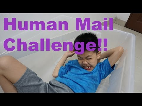Daddy Throws WZ In A Box For The Human Mail Challenge!