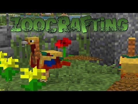 Golden Pheasants?!? - ZooCrafting S2 - Episode 50