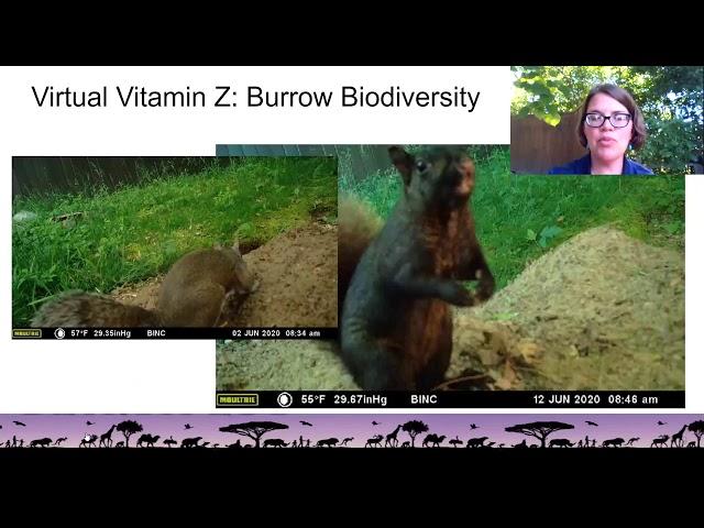 Belle Isle Nature Center | Backyards for Wildlife: Biodiversity