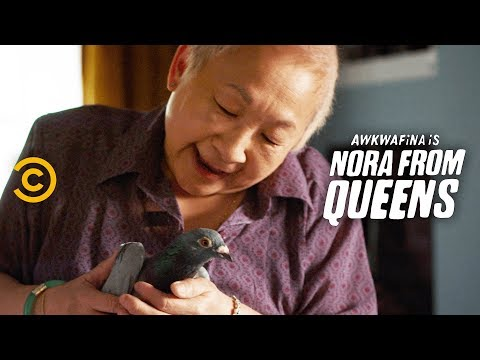 Adopting a Pigeon: Heartwarming or Just Gross? - Awkwafina is Nora from Queens