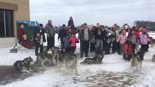 Sled Dog Class